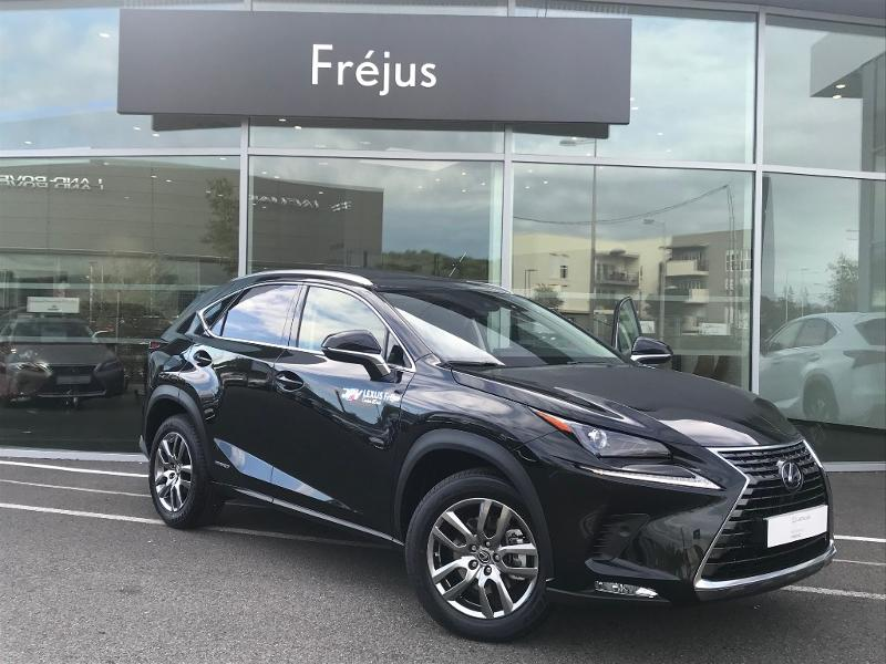 NX 300h 4WD Luxe MM19