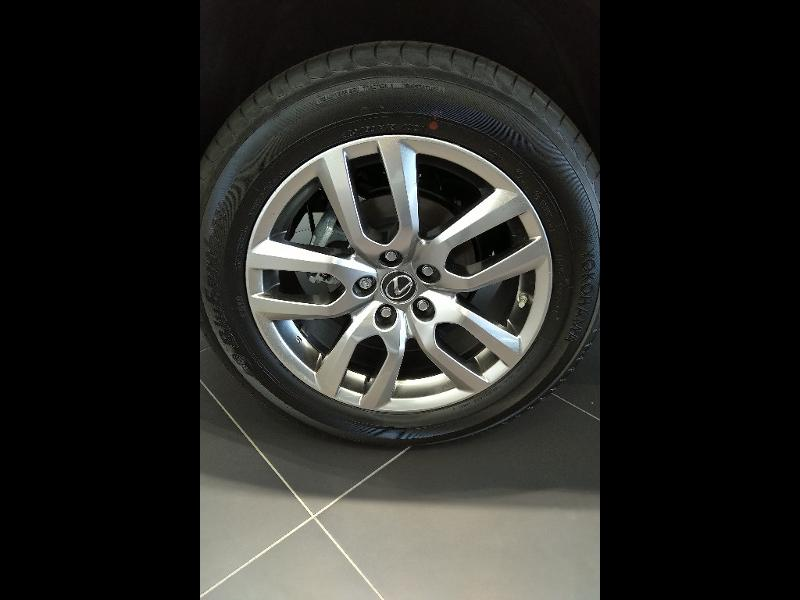 NX 300h 2WD Pack Business MY19